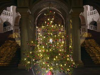 Schloss Bruchsal, Weihnachtsbaum im Schloss